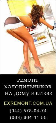 Ремонт холодильников и прочей бытовой техники в Киеве